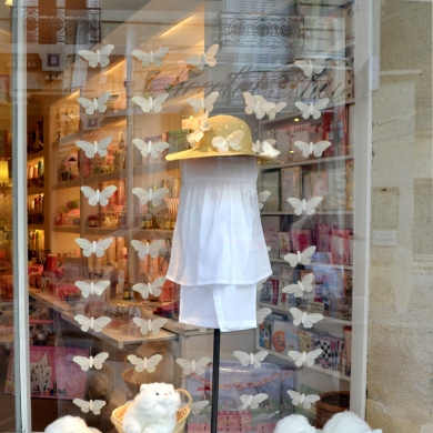 vitrine-papillons